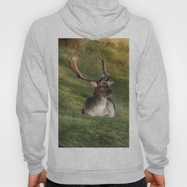 Mr Majestic Hoody