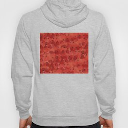 FIELD OF POPPIES Hoody