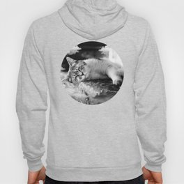 """""""Kitty in the clouds"""" Hoody"""