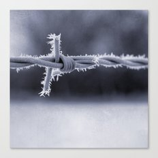 Frosted Barbed Wire Canvas Print