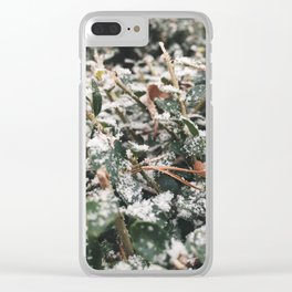 Frosted Green Clear iPhone Case