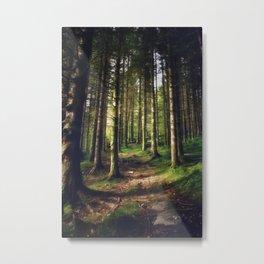 Woodland Fairytail Metal Print