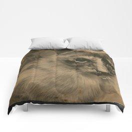 Misa I Comforters