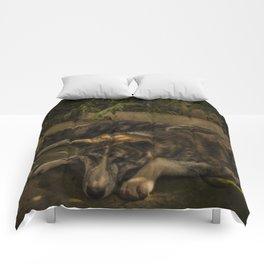 Gengis and Fenris Comforters