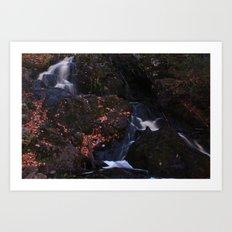 Waterfall Wyandotte Falls, MI Art Print