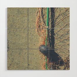 Fishnet with buoy on rope Wood Wall Art