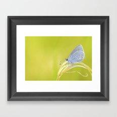 Small Blue Framed Art Print