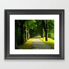 Summer Lane Framed Art Print