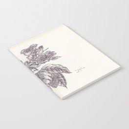 BALLEPN TRAVEL IN LAOS 4 Notebook