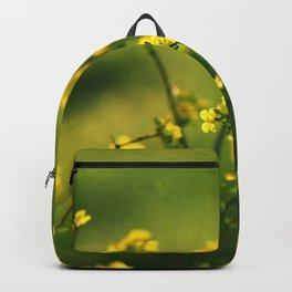Rape Seed - Flower - Plant - Blossom - Field - Meadow - Rural. Little sweet moments. Backpack