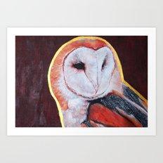 Barn Owl 2 Art Print