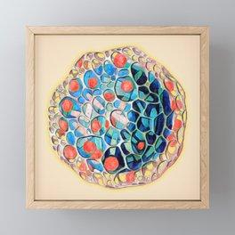Ernst Haeckel Revisited Framed Mini Art Print