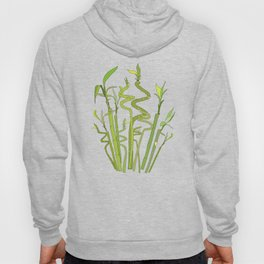 Scattered Bamboos Hoody