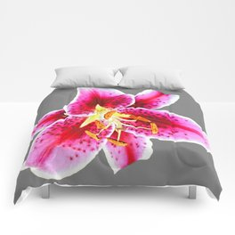 GREY FUCHSIA PINK ASIATIC LILY FLOWER  ABSTRACT ART Comforters