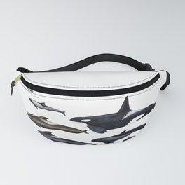 Blackfish Fanny Pack