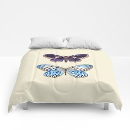 NIGHT & DAY BUTTERFLY Comforters