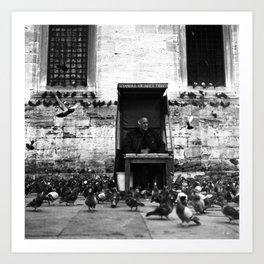 Istanbul Pigeons Art Print