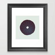 Sea's Design - Urchin Skeleton (Black) Framed Art Print