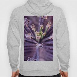 Purple Euphorbia in Detail Hoody