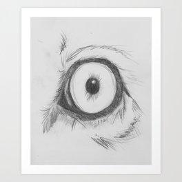 Cats Eye (lion) Art Print