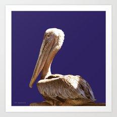Pelican On Blue Art Print