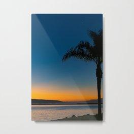 Wedge Palm at Dawn Metal Print