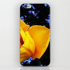 Flower Days iPhone & iPod Skin