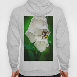 The Bumble Bee Hoody