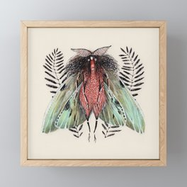 Moth Framed Mini Art Print
