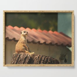 Meerkat Funny Observer #decor #society6 #buyart Serving Tray