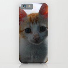 ORANGE CAT. iPhone 6s Slim Case