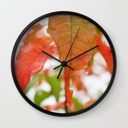 Colorful Leaves with Raindrops Wall Clock