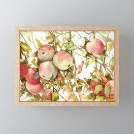 Apples, Apple Tree kitchen design illustration fruits Framed Mini Art Print
