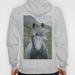 Grey Horse Hoody