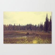 Four Mile Meadow 01 Canvas Print