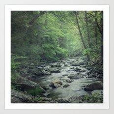 Misty Forest Stream Art Print