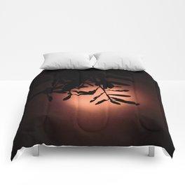 Coral Moon Comforters