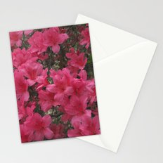 Pink Beauties Stationery Cards