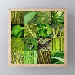 Green Leaf & Tree Nature Collage Framed Mini Art Print