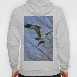 Osprey and Prey - Wildlife Photography Hoody