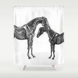 Horsy Horsy Shower Curtain