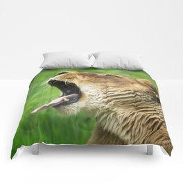 Yawning Lion Comforters