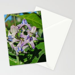 It's Another Day Stationery Cards