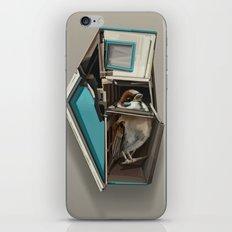 home bird iPhone & iPod Skin