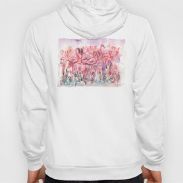 Flamingoes Hoody