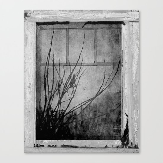Branches At The Window  Canvas Print