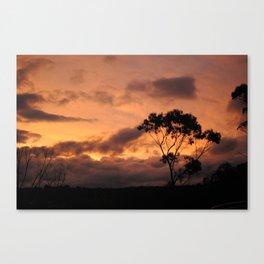 Blue Mountains, Australia Canvas Print