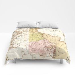 Map of Delaware (1838) Comforters