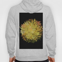God Particle Hoody