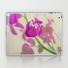 Evening Stock Laptop & iPad Skin